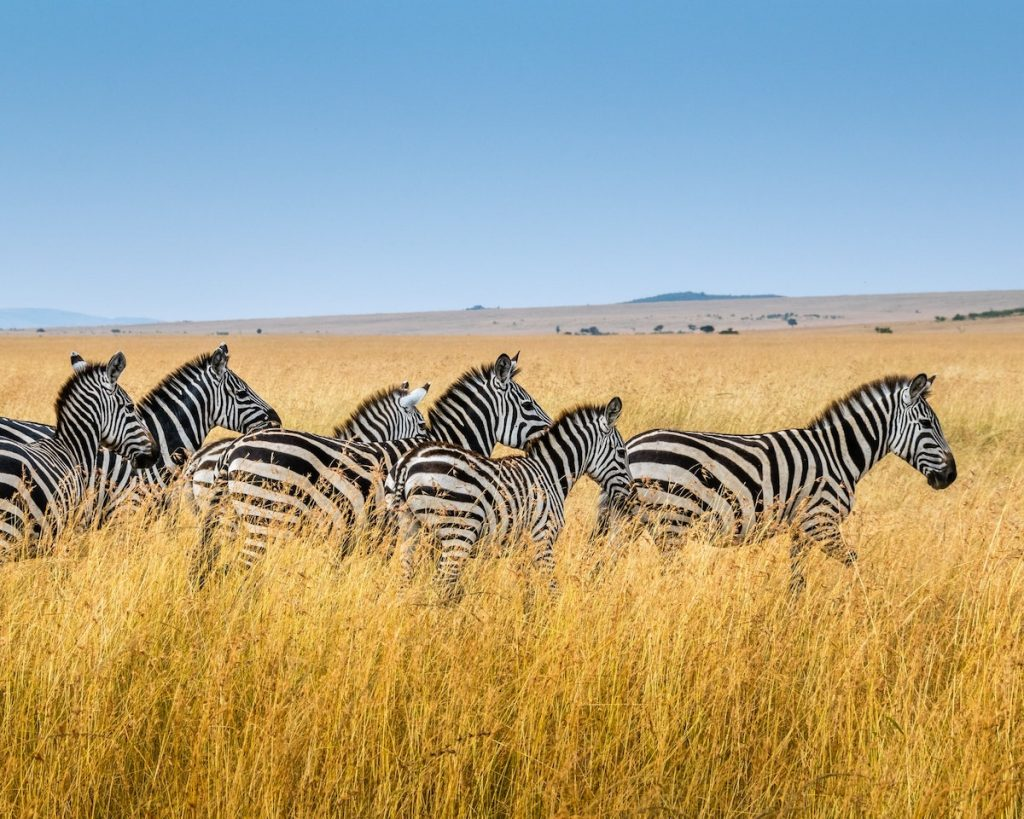 Chequear el clima antes de viajar a África