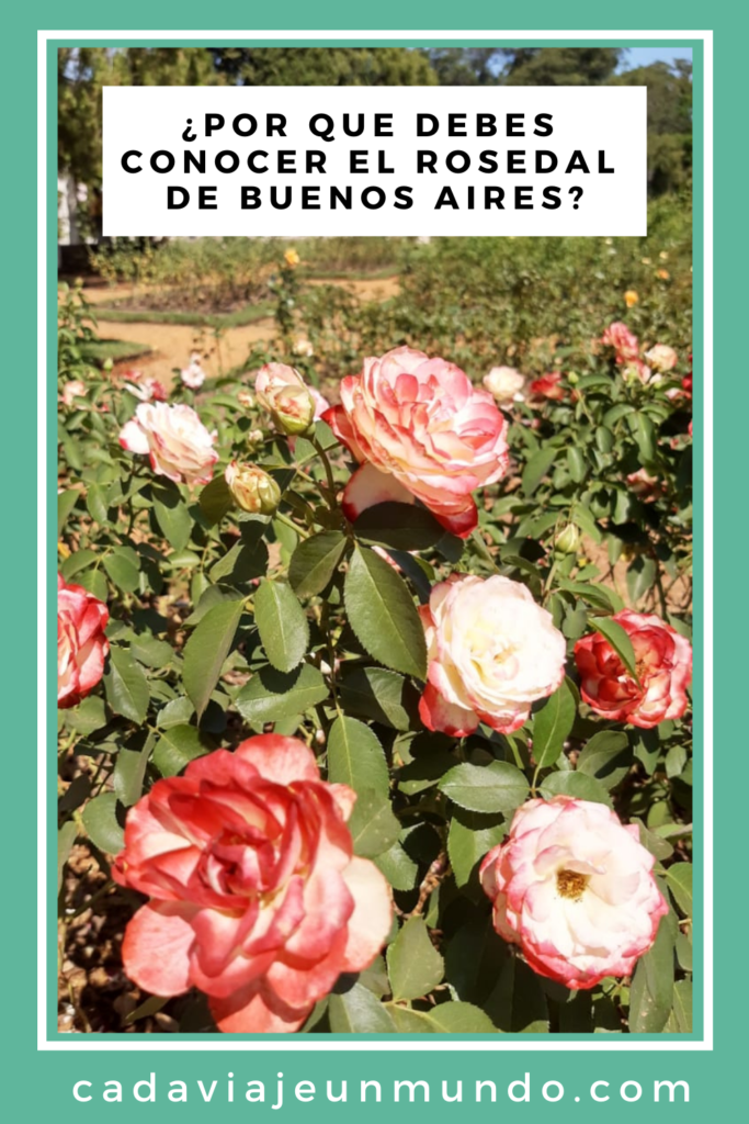 PIN: EL ROSEDAL DE BUENOS AIRES