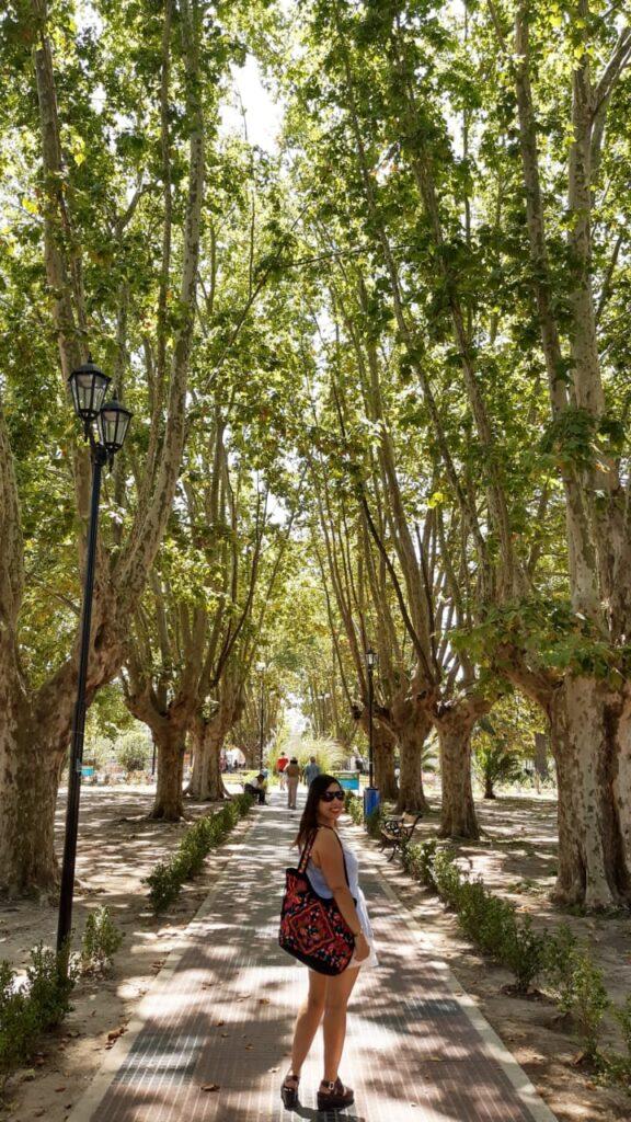 ¿Dónde pasear por Buenos Aires al aire libre en cuarentena?
