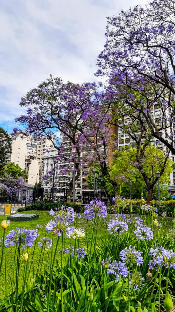 ¿Qué hacer en Buenos Aires al aire libre?